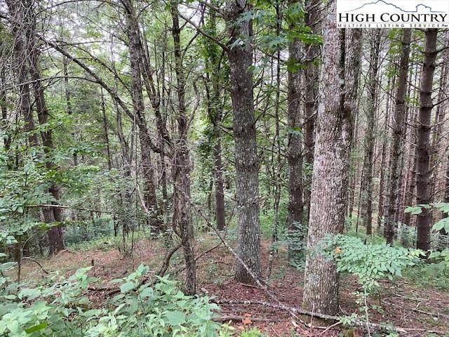 tbd Riverwood Trail, Lansing, NC 28643 (#232284) :: Mossy Oak Properties Land and Luxury