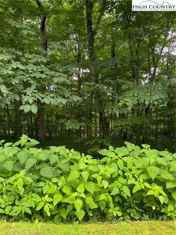 TBD Craggy Pointe, Lot 5, Sugar Mountain, NC 28604 (#232327) :: Mossy Oak Properties Land and Luxury