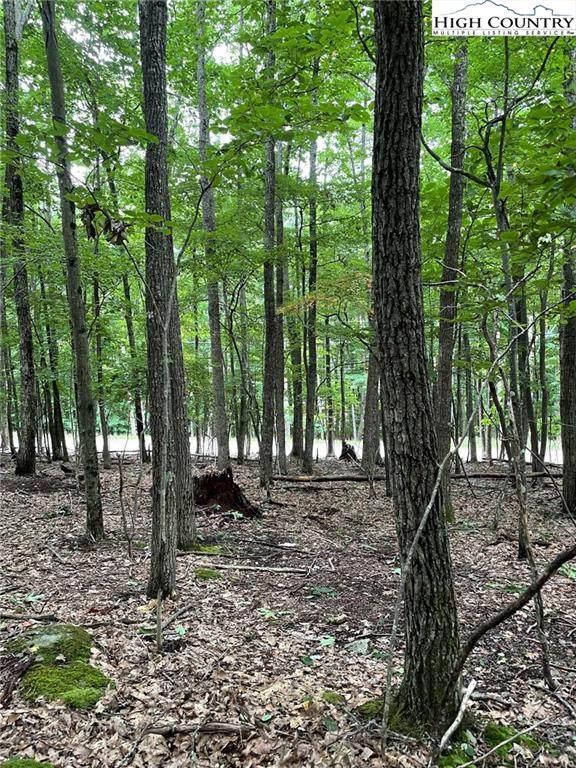 111 S Hickory Lane, Beech Mountain, NC 28604 (#232821) :: Mossy Oak Properties Land and Luxury