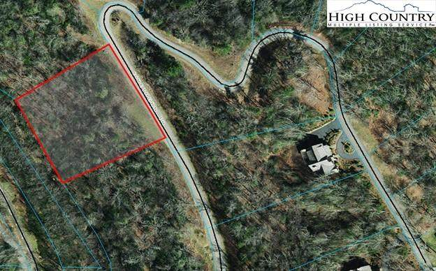 131R Firethorn Trail, Blowing Rock, NC 28605 (MLS #233448) :: RE/MAX Impact Realty