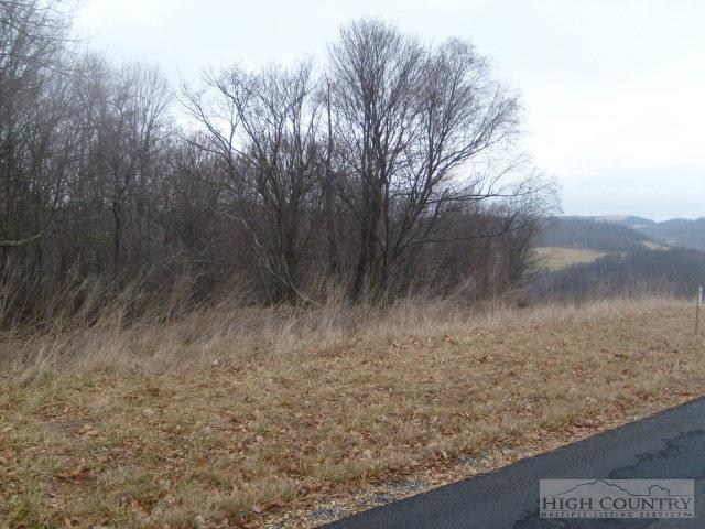 Lot  #17 Terra Vista Drive, Sparta, NC 28675 (MLS #39154503) :: Keller Williams Realty - Exurbia Real Estate Group