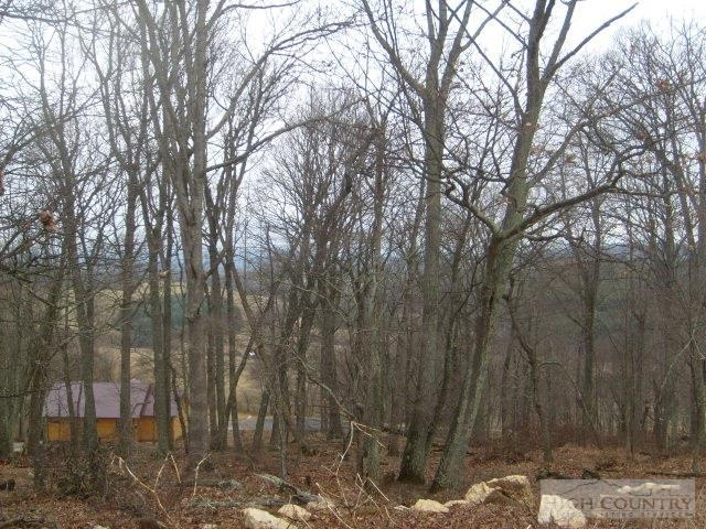 Lot  #19 Terra Vista Drive, Sparta, NC 28675 (MLS #39154504) :: Keller Williams Realty - Exurbia Real Estate Group
