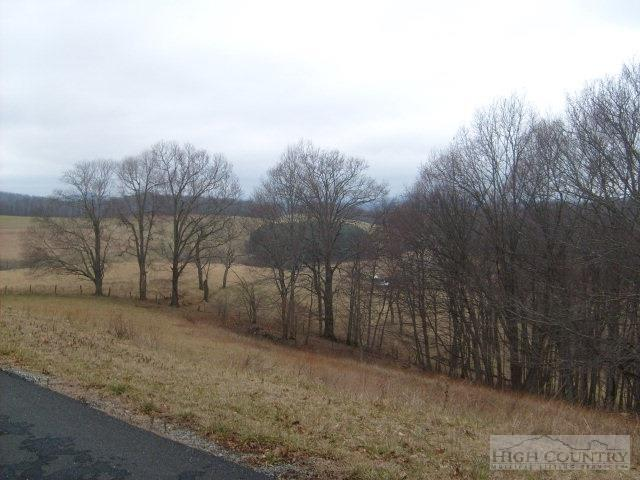 Lot  #22 Glendale Court, Sparta, NC 28675 (MLS #39154505) :: Keller Williams Realty - Exurbia Real Estate Group