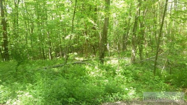 Lot 15 Wind Ridge Drive, Sparta, NC 28675 (MLS #39155207) :: RE/MAX Impact Realty