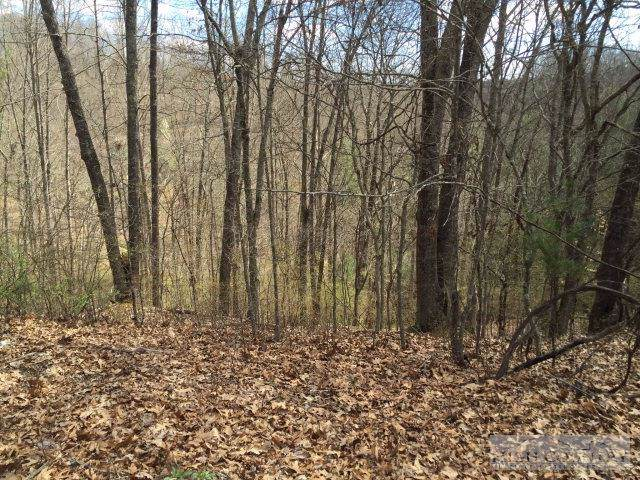Lot 31C River Lake, Piney Creek, NC 28663 (MLS #39156240) :: Keller Williams Realty - Exurbia Real Estate Group