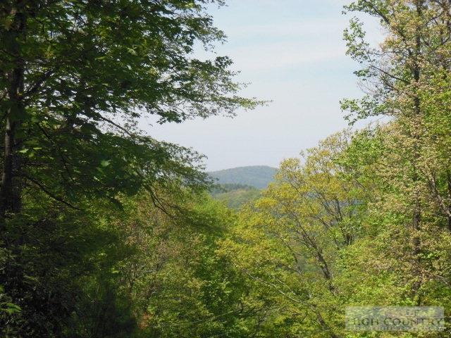 Tbd Waterfall Road, Sparta, NC 28675 (MLS #39156247) :: Keller Williams Realty - Exurbia Real Estate Group