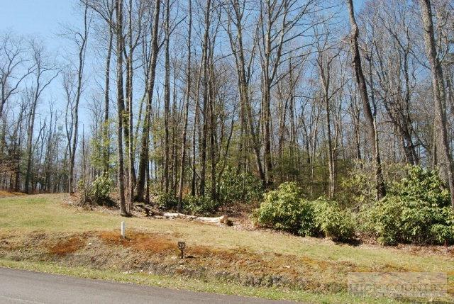 Lot 29 Linville River Lane, Linville, NC 28646 (MLS #39201009) :: Keller Williams Realty - Exurbia Real Estate Group