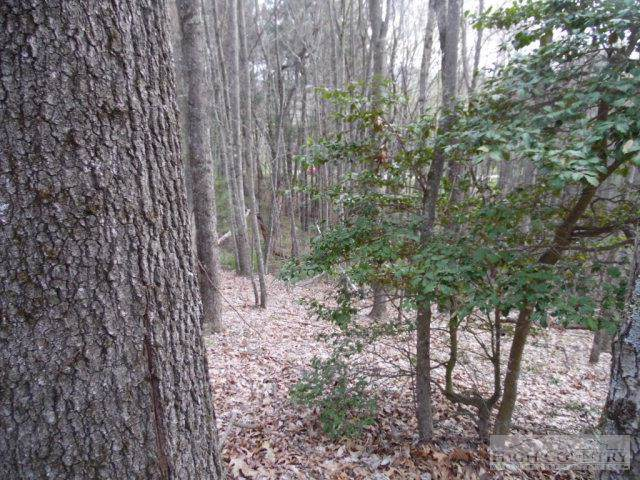 Lot 13 Westwood Drive, Sparta, NC 28675 (MLS #39201079) :: RE/MAX Impact Realty