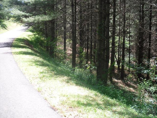 Lot 79 Village Pine Way, Jefferson, NC 28640 (MLS #39202144) :: Keller Williams Realty - Exurbia Real Estate Group