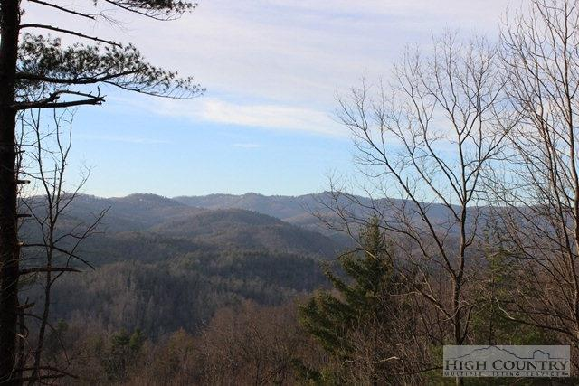Tbd Canyon Bluff Drive, Lenoir, NC 28664 (MLS #39202326) :: Keller Williams Realty - Exurbia Real Estate Group