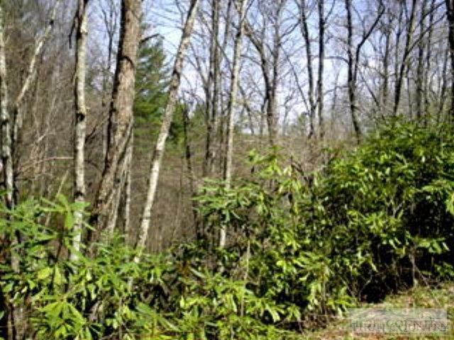 Lot 33 Charlie Lane, West Jefferson, NC 28694 (MLS #39202684) :: RE/MAX Impact Realty