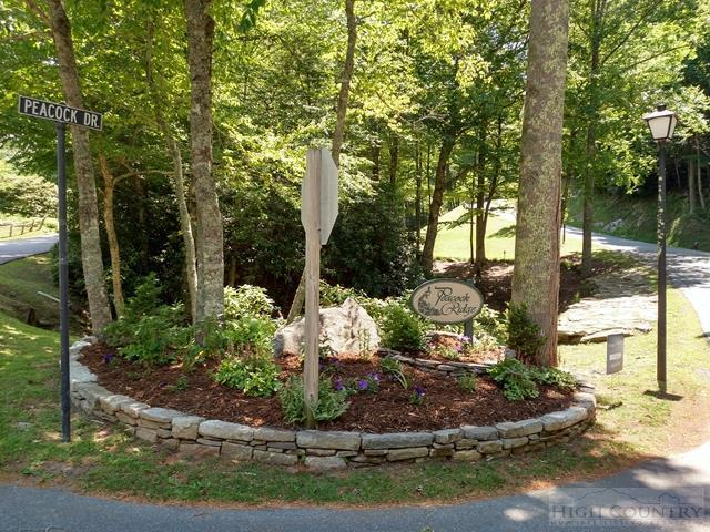 Lot 28 Peacock Drive, Blowing Rock, NC 28605 (MLS #39202900) :: Keller Williams Realty - Exurbia Real Estate Group