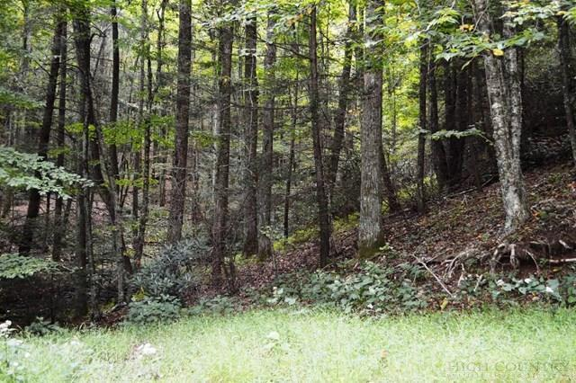 Lot 23 Green Mountain Road, Sparta, NC 28675 (MLS #39203982) :: Keller Williams Realty - Exurbia Real Estate Group