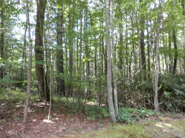 Lot 2 Woodland Shores, Jefferson, NC 28640 (MLS #39204094) :: Keller Williams Realty - Exurbia Real Estate Group