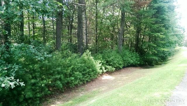 Tbd Lot Holly Run, Glade Valley, NC 28627 (MLS #39204300) :: Keller Williams Realty - Exurbia Real Estate Group