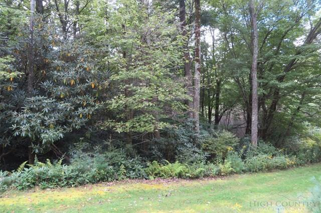 Lot 1 Spring Pond Acres, Blowing Rock, NC 28605 (MLS #39204904) :: Keller Williams Realty - Exurbia Real Estate Group