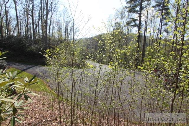 Lot A9 Allegheny Lane, Boone, NC 28607 (MLS #39204969) :: Keller Williams Realty - Exurbia Real Estate Group