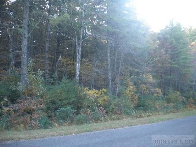 Lot 2 Pine Chase, Glade Valley, NC 28627 (MLS #39205171) :: Keller Williams Realty - Exurbia Real Estate Group