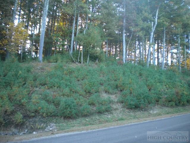 Lot 3 Pine Chase, Glade Valley, NC 28627 (MLS #39205185) :: Keller Williams Realty - Exurbia Real Estate Group