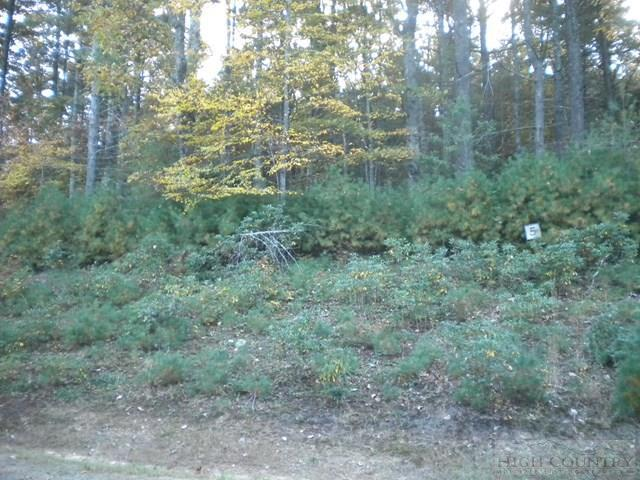 Lot 5 Pine Chase, Glade Valley, NC 28627 (MLS #39205187) :: Keller Williams Realty - Exurbia Real Estate Group