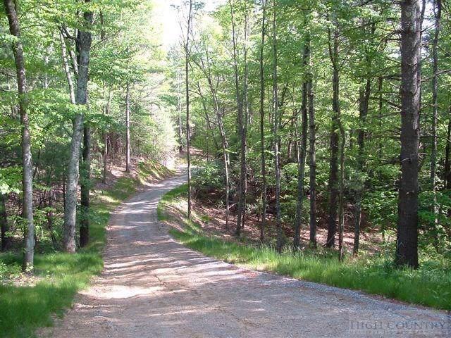 Lot 1 Sec II Talon Drive, Boone, NC 28607 (#39205390) :: Mossy Oak Properties Land and Luxury