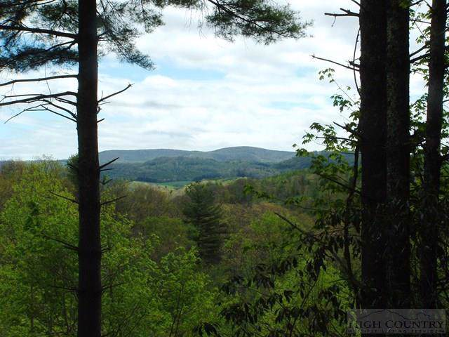 Lot 3 Sec II Talon Drive, Boone, NC 28607 (#39205393) :: Mossy Oak Properties Land and Luxury