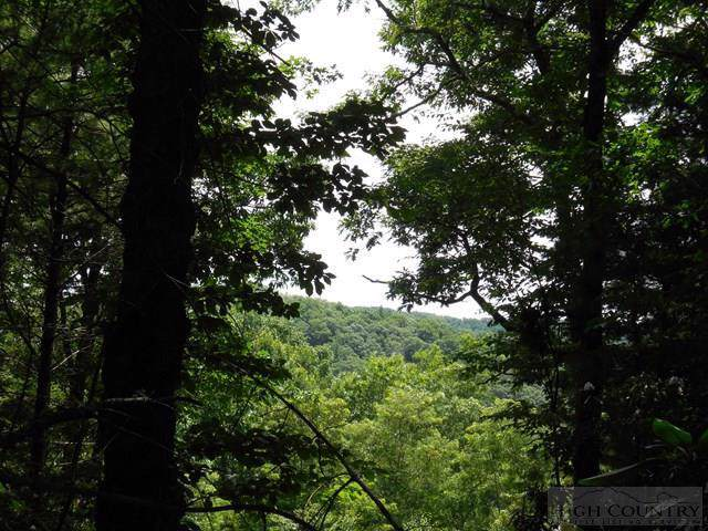 Lot 16 Sorrento Forest, Blowing Rock, NC 28605 (MLS #39205587) :: Keller Williams Realty - Exurbia Real Estate Group
