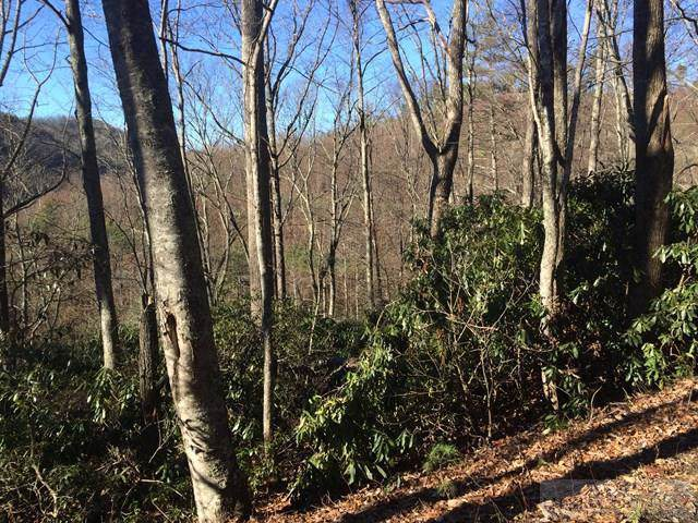 Tbd Panorama Drive, Todd, NC 28622 (MLS #39205783) :: Keller Williams Realty - Exurbia Real Estate Group