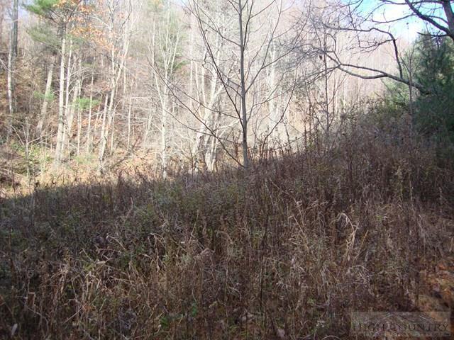 Tbd Deer Path Road, Crumpler, NC 28617 (MLS #39205824) :: Keller Williams Realty - Exurbia Real Estate Group