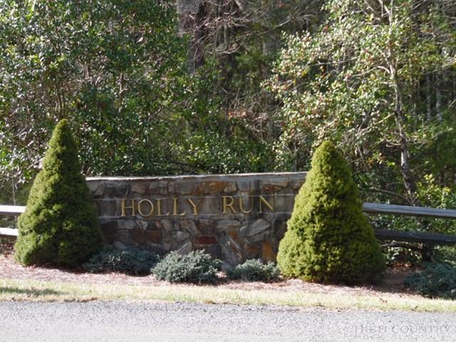 Tbd Holly Run, Sparta, NC 28627 (MLS #39206288) :: Keller Williams Realty - Exurbia Real Estate Group