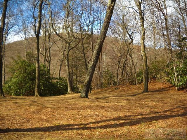 Lot 57 Rock Ledge Lane, Sugar Mountain, NC 28604 (MLS #39206532) :: RE/MAX Impact Realty