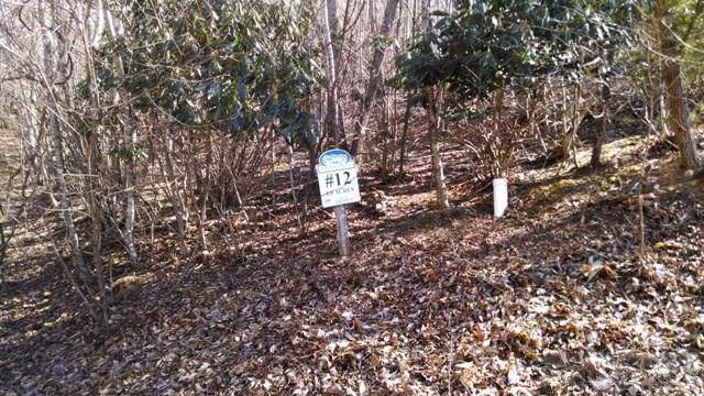 12 Christmas Mountain Lane, Fleetwood, NC 28626 (MLS #39206778) :: Keller Williams Realty - Exurbia Real Estate Group