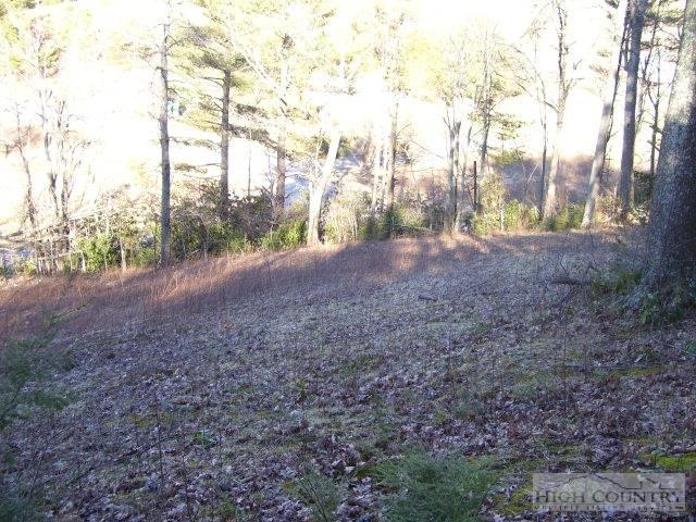 Lot 4 Farm Valley Lane, Boone, NC 28607 (MLS #39206805) :: Keller Williams Realty - Exurbia Real Estate Group