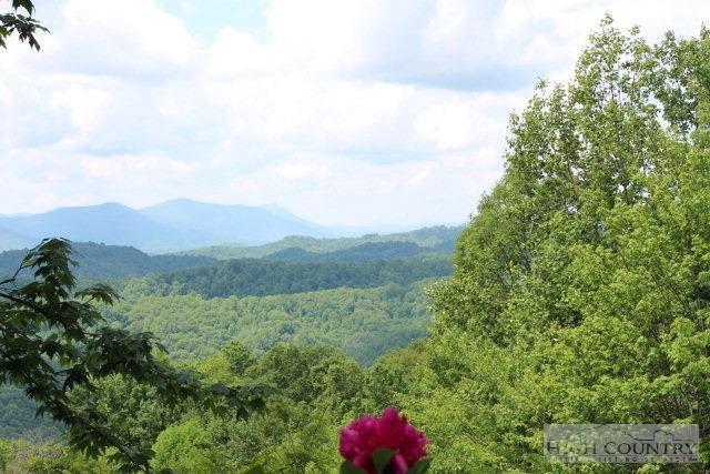 1315 Dream Mountain Road, Grassy Creek, NC 28631 (MLS #39206823) :: Keller Williams Realty - Exurbia Real Estate Group