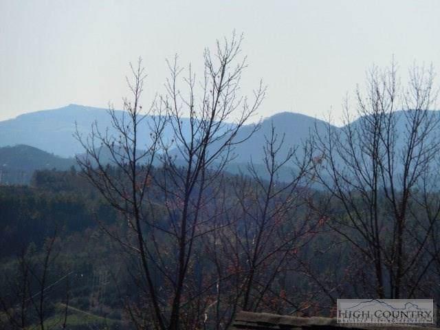 Lot 58 Cedar Trail, Fleetwood, NC 28626 (MLS #39206985) :: Keller Williams Realty - Exurbia Real Estate Group
