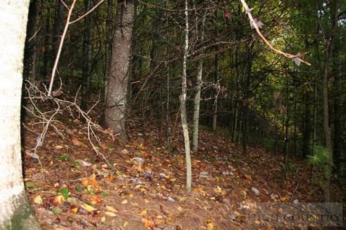 Tbd Chestnut Creek Road, West Jefferson, NC 28694 (MLS #39207016) :: Keller Williams Realty - Exurbia Real Estate Group