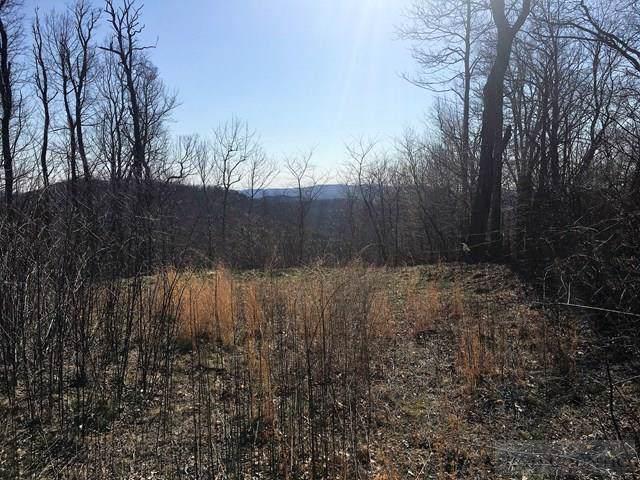 Lot 6 Grace Mountain Road, Todd, NC 28684 (#39207032) :: Mossy Oak Properties Land and Luxury