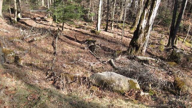 146 Creek 246 Pond Creek, Beech Mountain, NC 28604 (MLS #39207391) :: Keller Williams Realty - Exurbia Real Estate Group