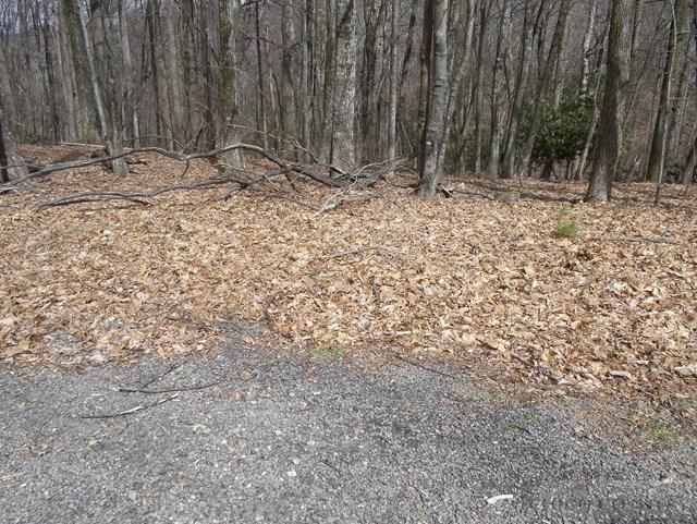 Tract#24 Deer Park Lane, Sparta, NC 28675 (MLS #39207572) :: Keller Williams Realty - Exurbia Real Estate Group