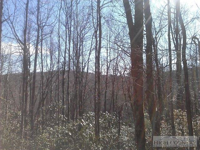 Lot 19 Chickasaw Trail, Blowing Rock, NC 28605 (MLS #182823) :: Keller Williams Realty - Exurbia Real Estate Group