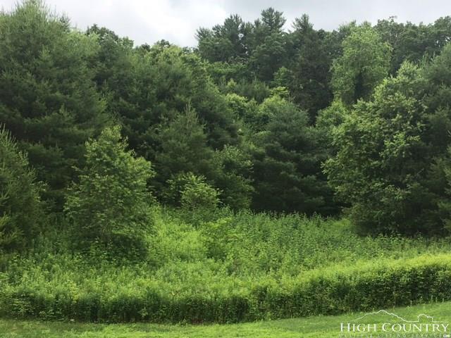Lot 77 Green Meadows Drive, Todd, NC 28684 (MLS #201828) :: Keller Williams Realty - Exurbia Real Estate Group
