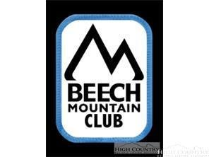102 Woodside Lane, Beech Mountain, NC 28604 (MLS #203183) :: Keller Williams Realty - Exurbia Real Estate Group