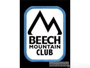 245 Buckeye Creek Road, Beech Mountain, NC 28604 (MLS #203185) :: Keller Williams Realty - Exurbia Real Estate Group