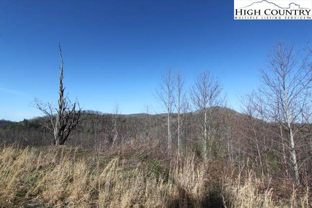 Lot 12 Pleasant View Drive, Vilas, NC 28696 (#204862) :: Mossy Oak Properties Land and Luxury