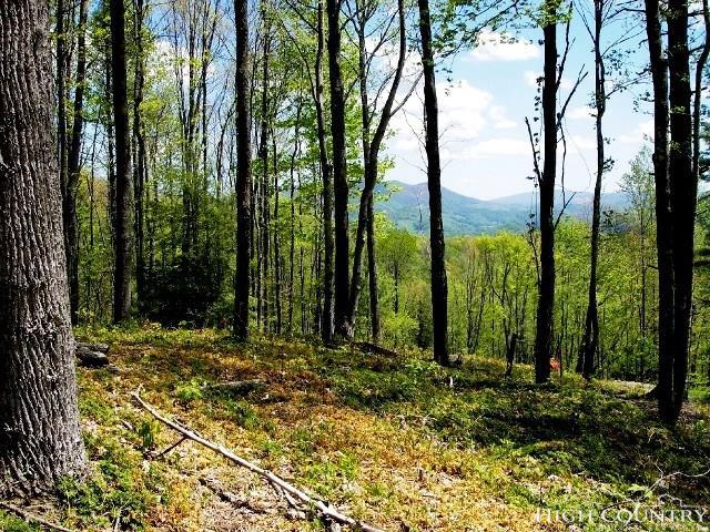 Lot 78 Tucker Trail, Vilas, NC 28692 (MLS #204919) :: Keller Williams Realty - Exurbia Real Estate Group