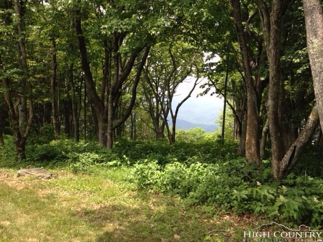 Lot 8 Crown Point Road, West Jefferson, NC 28694 (MLS #205830) :: Keller Williams Realty - Exurbia Real Estate Group