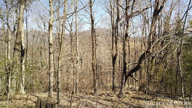 Lot 6 Grace Highlands Trail, Todd, NC 28684 (MLS #213965) :: RE/MAX Impact Realty