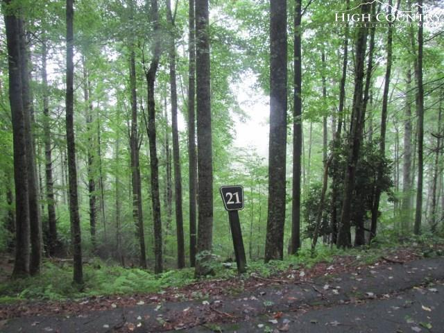 Lot 21 Bennick Place, Sugar Grove, NC 28679 (MLS #216055) :: RE/MAX Impact Realty