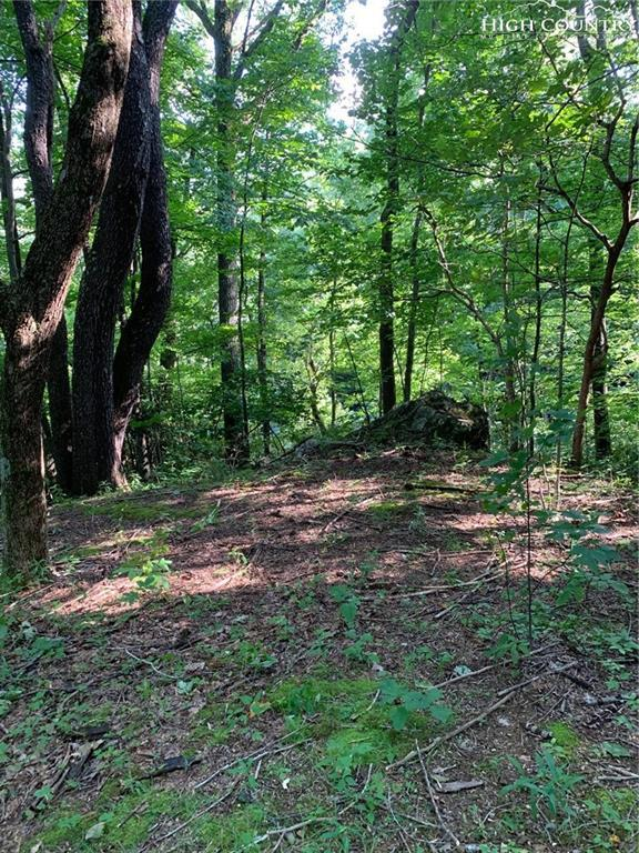 TBD Grandfather Farms Road, Banner Elk, NC 28604 (MLS #216820) :: RE/MAX Impact Realty