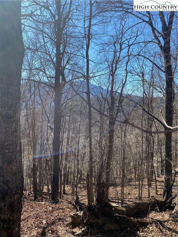 TBD Grandview Lot 37C Drive, Banner Elk, NC 28604 (#225100) :: Mossy Oak Properties Land and Luxury